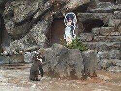 画像提供:東武動物公園