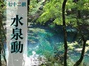 七十二候「水泉動」 暖かくなったら訪れたい美しい泉