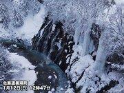 圧巻の氷瀑 凍り付く「白ひげの滝」 美瑛