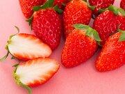 美味しいいちごの見分け方と傷みにくい保存法