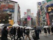 東京など関東 雨のピーク過ぎるも夕方にわか雨注意