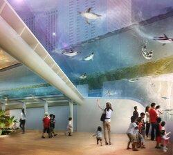 画像:サンシャイン水族館、「天空のペンギン」など屋外エリアのリニューアルを夏へ延期 鳥インフルの影響で