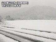 西日本の市街地でも積雪 明日にかけ寒気ピーク
