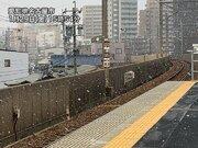 名古屋市内で雪が降り出す 芝生などうっすら白くなることも