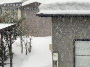 局地的な強い雪は依然として続く 北陸山沿いは今夜も積雪増加に警戒