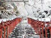 京都で雪景色 古都を白く染める雪