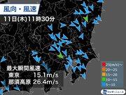 関東は日差しの温もりを吹き飛ばす強風 夕方まで風の強い状況続く