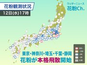花粉 関東南部で本格飛散開始 明日も「やや多い」予想