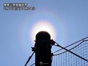 関東に花粉光環が出現 雨上がりと強風で花粉飛散増加