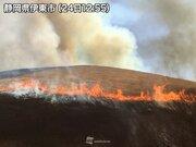 碧空の下、燃え上がる山:大室山の山焼き