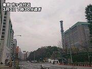 今日は東京マラソン 雨と寒さへの対策がレースの鍵に