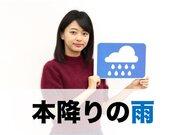3月4日(月)朝のウェザーニュース・お天気キャスター解説