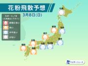 3月8日(日)の花粉飛散予想 東京は雨でもやや多い予想