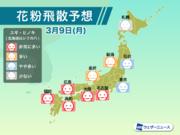 9日(月)の花粉飛散予想 名古屋や大阪では大量飛散に注意