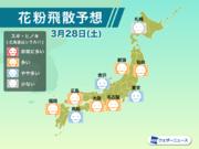 3月28日(土)の花粉飛散予想 西日本や東北で多く飛散