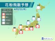 4月2日(木)の花粉飛散予想 東京や名古屋など非常に多い予想