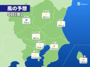 東京 5日(金)は強風で桜吹雪に