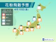 4月10日(金)の花粉飛散予想 東京など広く「多い」予想
