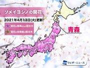 青森で桜と梅が同日開花 ソメイヨシノは観測史上最早記録