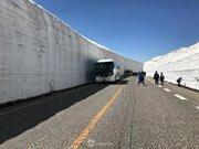 立山黒部アルペンルート 15日に全面開通 今年は約16mの雪の壁