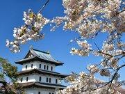 札幌、函館でソメイヨシノ満開 札幌は過去5番目の早さ
