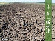 七十二候「蚯蚓出」 良質の土を生み出すミミズの力