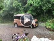 関東で局地的に雨雲が発達中 落雷や降雹に注意