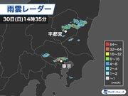 東京でゲリラ豪雨、栃木では雷や雹も 21時頃まで注意