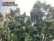 関東は夕方になり風のピーク 横浜や東京都内で20m/s以上の強風