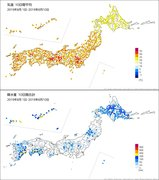 8月上旬の東京 25年ぶりの暑さ&57年ぶりの雨なし