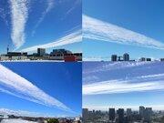 真っ青な空を一直線に横切る雲