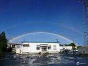 副虹、白虹、月光虹 いくつレア虹を見たことある?