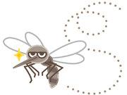 【今年の蚊】8月下旬以降に警戒すべき3つの理由