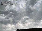 北関東で激しい雨や落雷 関東南部も局地的な雨に注意