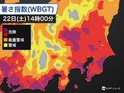 東京都と神奈川県に熱中症警戒アラート発表 連日の猛暑に警戒