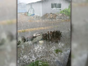 宮崎県、局地的に激しい雨 1時間に80mm近い雨を観測