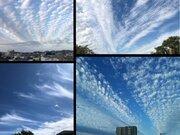 9月20日は「空の日」 きっかけは徳川家康の子孫!?