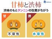 甘柿と渋柿の見分け方