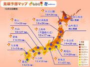 台風の塩害は限定的と判明 全国的に鮮やかな紅葉に期待!