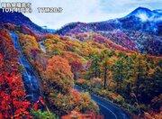 東北や長野などの山では紅葉が見頃に