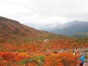 紅葉前線はジワジワと南下 一面に広がる木々の彩り