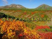 北日本の山は今週末が見頃 北海道では紅葉が映える陽気に