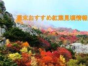 北日本や東日本の高い山で見頃 18日(日)は北日本で広く紅葉日和
