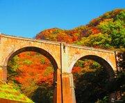 色とりどりの錦 各地から届く紅葉絶景