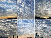 東京など関東の空を賑わす雲 ひつじ雲やナミナミとした波状雲