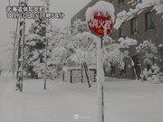 北海道はひと晩で30cmの積雪 今日も雪が続きさらに積雪増加