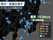 東京で最大瞬間風速15.9m/s 「木枯らし1号」以来の強い北風を観測