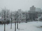 札幌はいきなり3cmの積雪 北海道で本格的に雪が積もる