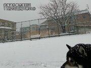 札幌は10日ぶりに積雪を観測 本州日本海側は雨に