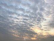 【関東】波打つ夕空 下り坂前兆の波状雲広がる